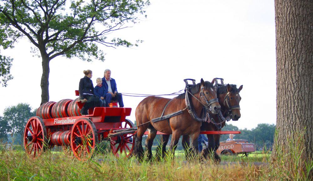 bierwagen paard en wagen