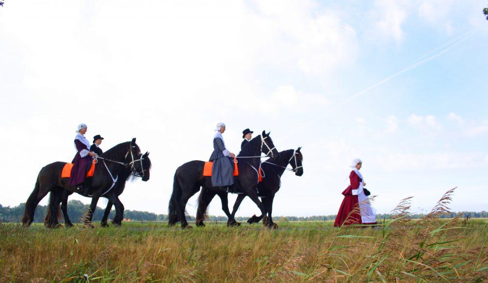 paarden optocht paardenballet
